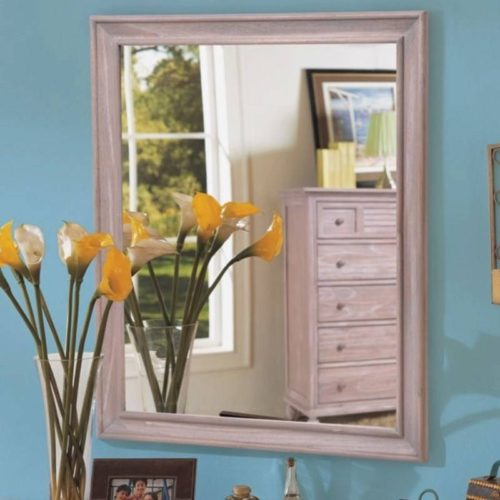 Tortuga mirror distressed driftwood costal Casual